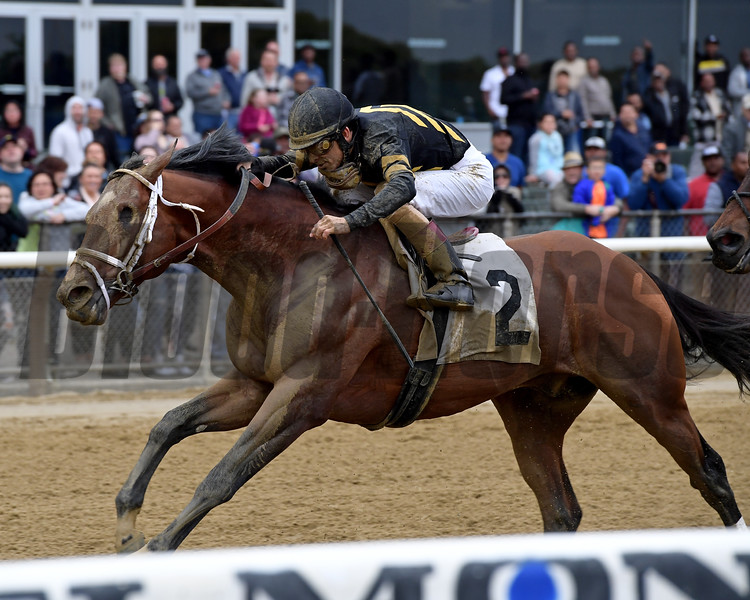 Patch - ALW, Belmont Park, May 12, 2018<br /> Coglianese Photos/Joe Labozzetta