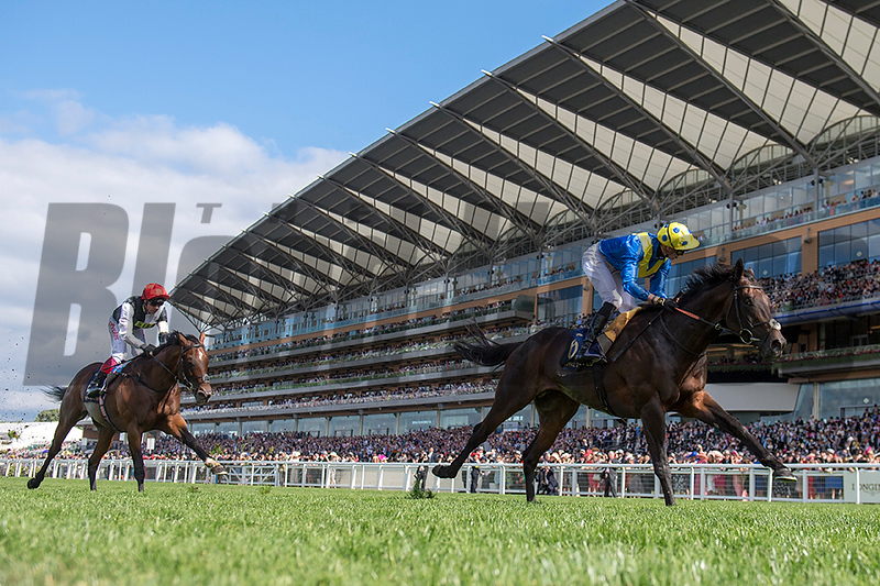 Poets Word, James Doyle, win the G1 Prince of Wales Stakes, Royal Ascot, Ascot Race Course, Ascot, UK, 6-20-18, Photo by Mathea Kelley