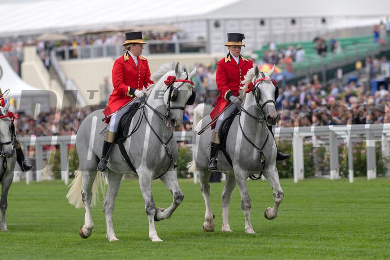 The Windsor Greys, Royal Procession, Royal Ascot, Ascot Race Course, Ascot, UK, 6-19-18, Photo by Mathea Kelley