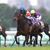 Epoca d'Oro (JPN); Satsuki Sho; G1; Nakayama Racecourse; April 15 2018