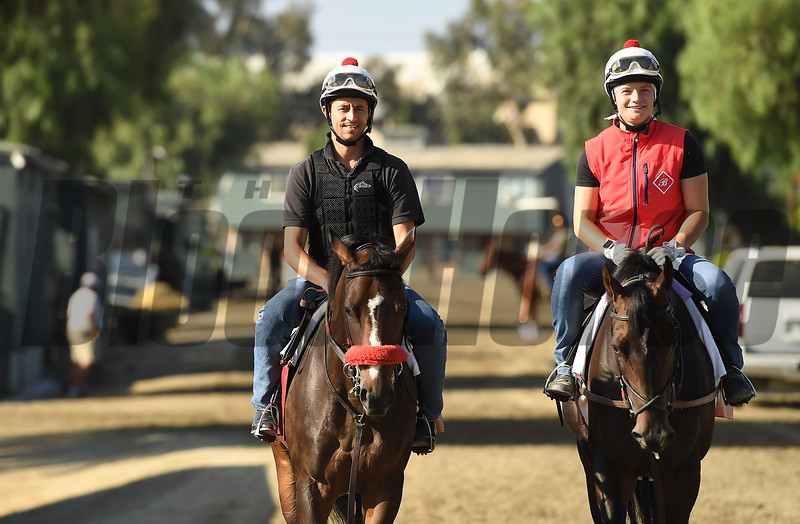 Barn foreman and exrercise rider David Meah with his wife Anna walk to the track  to gallop horses at Santa Anita.