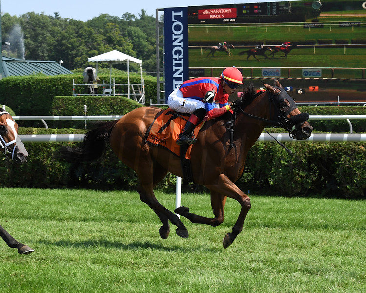 Sandy'z Slew wins the Troy Handicap at Saratoga Sunday, August 5, 2018. Photo: Coglianese Photo
