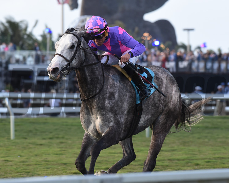 Stormy Victoria wins the 2018 South Beach Stakes<br /> Coglianese Photos/Kenny Martin