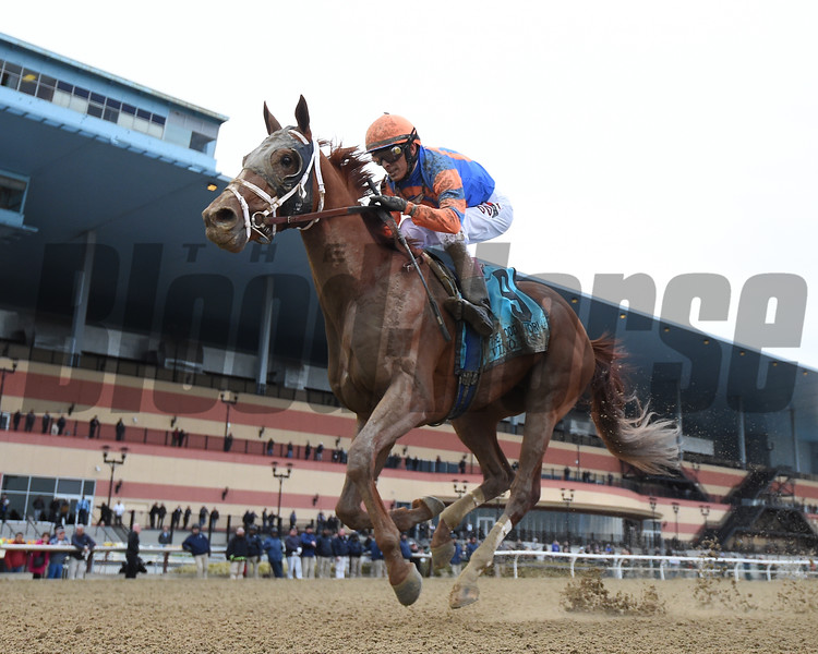 Vino Rosso wins the 2018 Wood Memorial<br /> Coglianese Photos