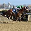 Empire Line wins the 2018 Damon Runyon Stakes