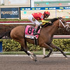 Audible wins the 2018 Florida Derby<br /> Coglianese Photos/Ashley Blum