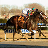 Firenze Fire wins the 2018 Jerome Stakes<br /> Coglianese Photos/Chelsea Durand