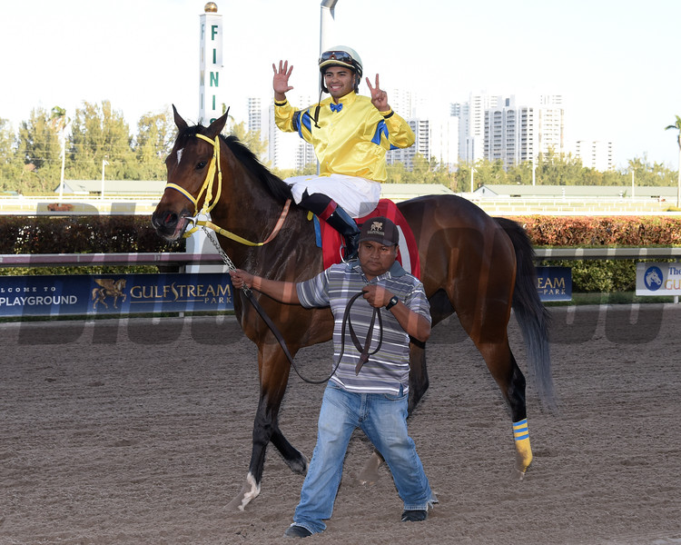 Luis Saez, 7 wins, Gulfstream Park; March 29 2018