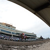 Audible wins the 2018 Florida Derby<br /> Coglianese Photos