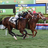 Shining Copper wins the 2018 Ft. Lauderdale Stakes<br /> Coglianese Photos/Leslie Martin
