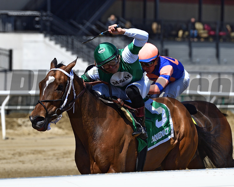 Christmas Sky wins the 2018 Karakorum Elektra Stakes<br /> Coglianese Photos/Joe Labozzetta