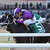 Black Stetson wins the 2018 Bridgetown Stakes<br /> Coglianese Photos/Annette Jasko
