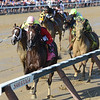 Weekend Hideaway wins the 2018 John Morrissey Stakes<br /> Coglianese Photos/Chelsea Durand
