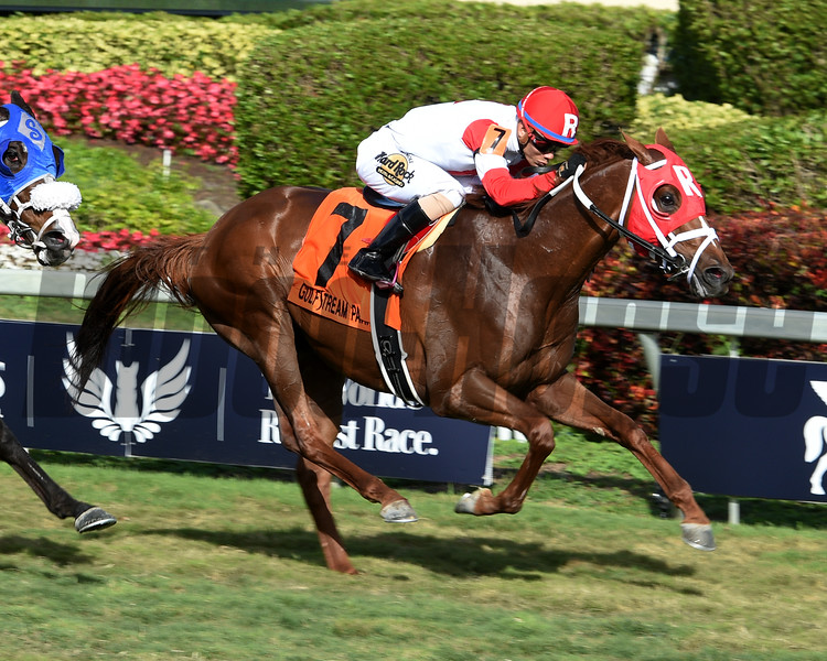 Oscar Nominated; Jose Ortiz, W. L. McKnight Handicap; G3T, Gulfstream Park; January 27 2018