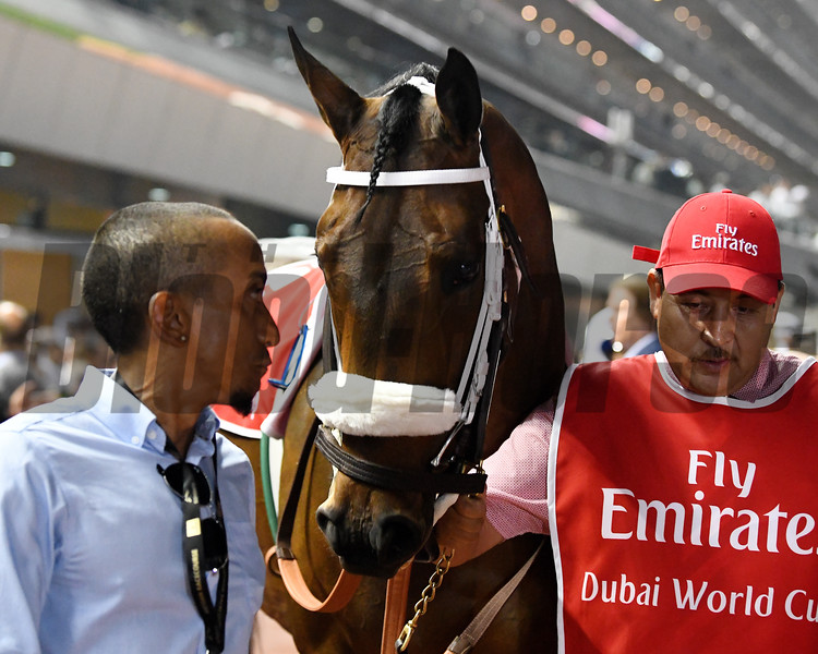Forever Unbridled; Dubai World Cup; G1; Meydan Race Course; Dubai, March 31 2018, 5th place