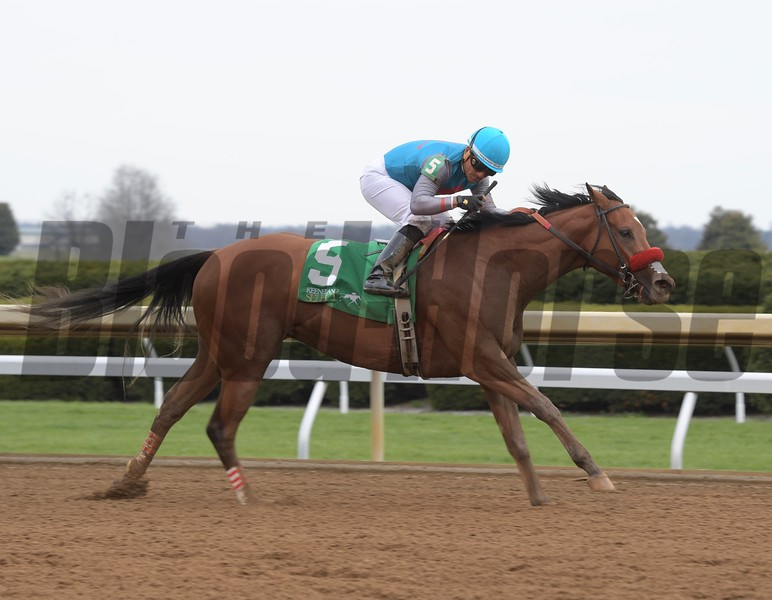 Gas Station Sushi wins the 2018 Beaumont Stakes (G3)<br /> Photo: Anne M. Eberhardt