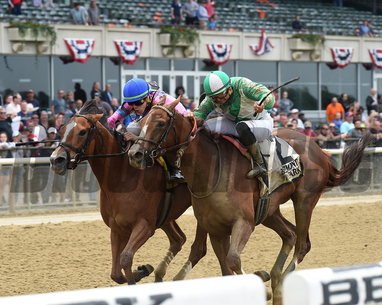 Holiday Disguise wins the 2018 Critical Eye Stakes<br /> Coglianese Photos/Chelsea Durand