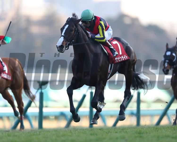 Danburite (JPN) wins the 2018 American Jockey Club Cup