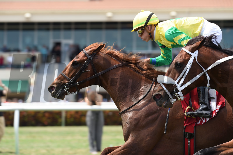Therapist wins the 2018 Cutler Bay Stakes<br /> Coglianese Photos/Lauren King