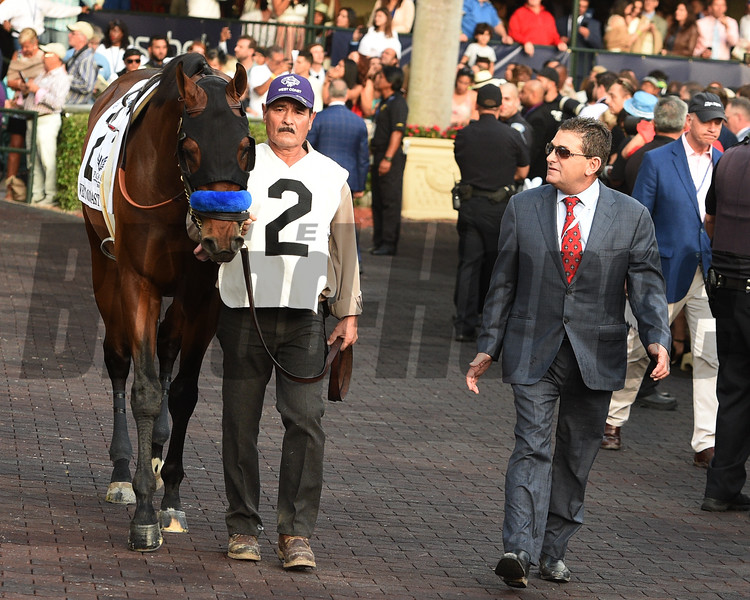 West Coast; (finished 2); Pegasus World Cup Invitational Stakes; G1; January 27 2018; Gulfstream Park