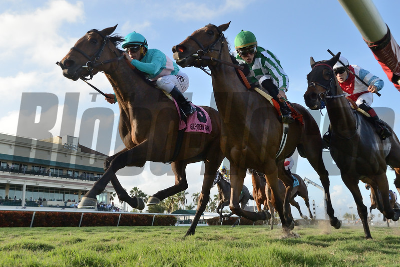 Elysea's World wins the 2018 Suwannee River Stakes<br /> Coglianese Photos/Leslie Martin