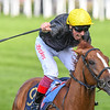 Stradivarius; Frankie Dettori; win th G1 Gold Cup; Royal Ascot; Ascot Race Course; Ascot; UK; 6-21-18; Photo by Mathea Kelley<br /> <br /> <br /> Stradivarius; Frankie Dettori; win th G1 Gold Cup; Royal Ascot; Ascot Race Course; Ascot; UK; 6-21-18; Photo by Mathea Kelley