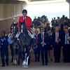 scene, Dubai Gold Cup; G2; Meydan Race Course; Dubai; March 31 2018