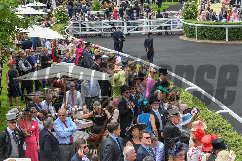 Royal Ascot,, Ascot Race Course, Ascot, UK, June 20, 2018. Photo: Mathea Kelley