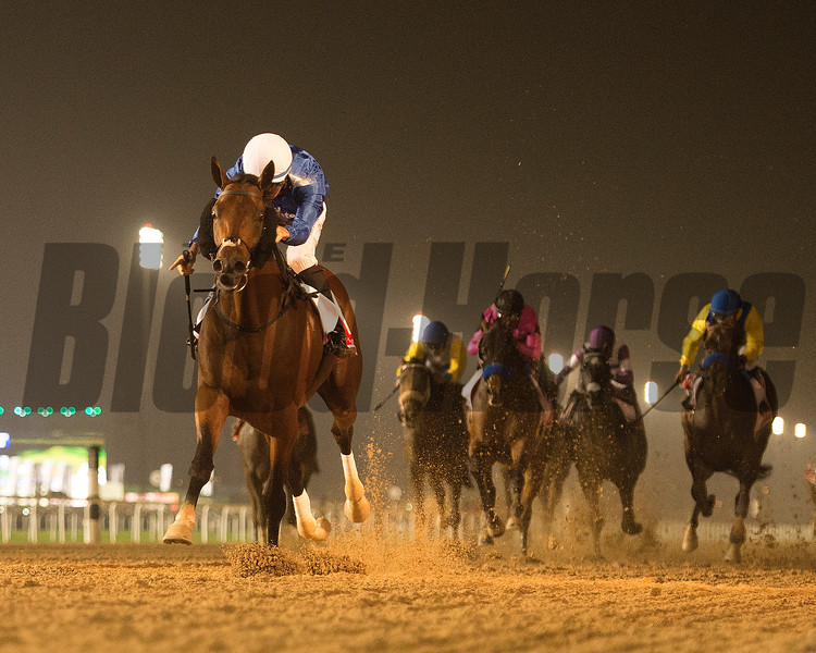 Thunder Snow and Christophe Soumilion, Trained by Saeed bin Suroor, win the Dubai World Cup, DWC 2018, Meydan Race Course, Dubai, UAE, 3-31-18, photo by Mathea Kelley/Dubai Racing Club