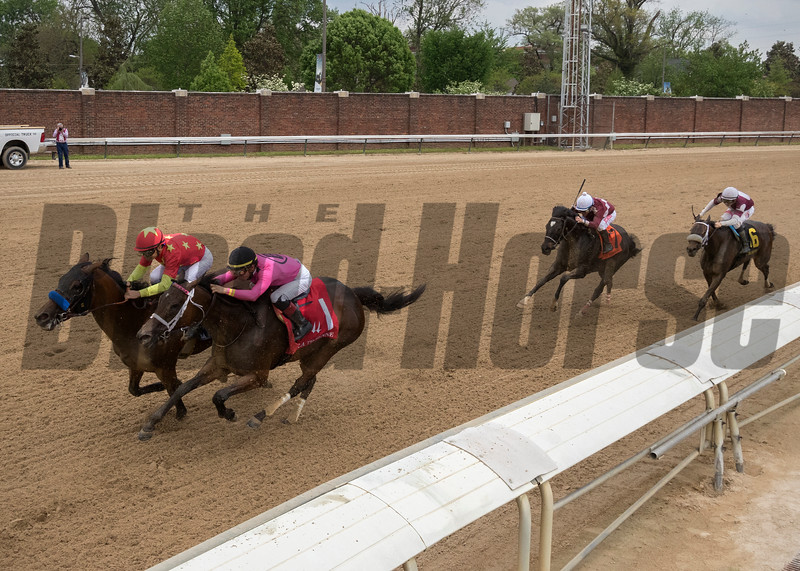 SALTY wins the The La Troienne at Churchill Downs on May 4th 2018, jockey Tyler Gafflione up