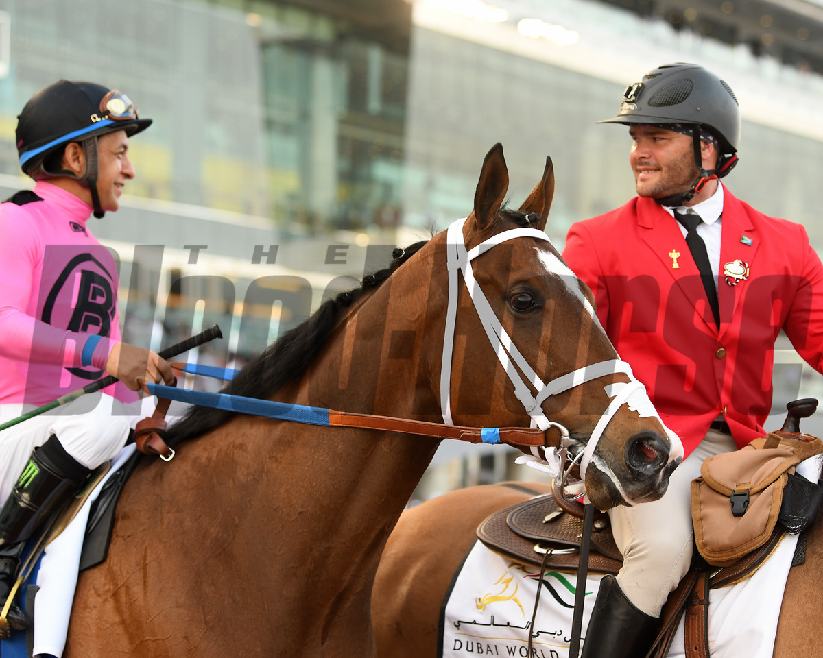 Conquest Tsunami, Victor Espinoza, Al Quoz Sprint; G1; Meydan Race Course; Dubai; March 31 2018, 3rd place
