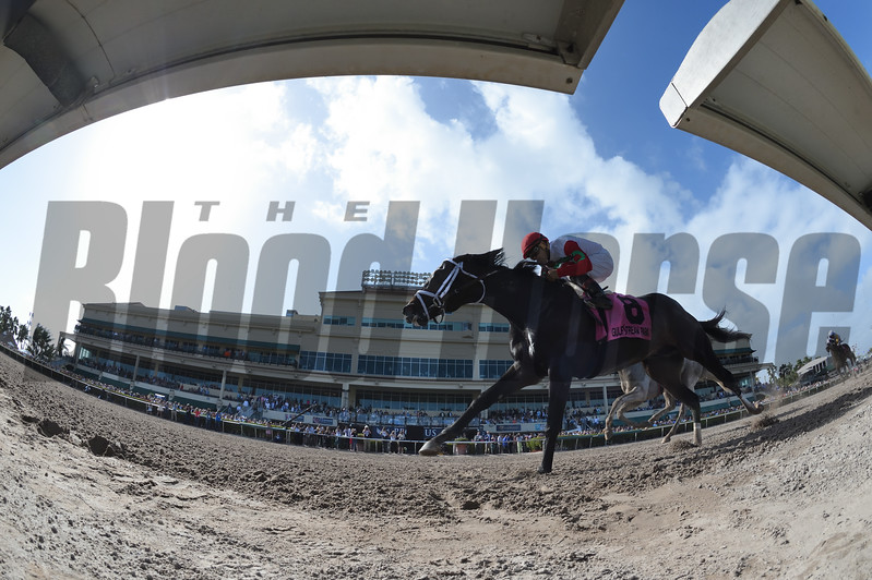 Tommy Macho wins the 2018 Fred W. Hooper Stakes<br /> Coglianese Photos