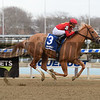 Sounds Delicious wins the 2018 Correction Stakes<br /> Coglianese Photos/Chelsea Durand