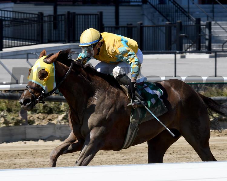 My Won Love wins the 2018 Videogenic Stakes<br /> Coglianese Photos/Annette Jasko