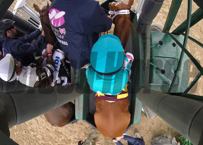 Monomoy Girl and Florent Geroux in the starting gate before the start of the Longines Kentucky Oaks at Churchill Downs on May 4, 2018.