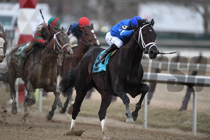 Enticed, Junior Alvarado, Gotham Stakes, G3, Aqueduct Racetrack, March 10 2018