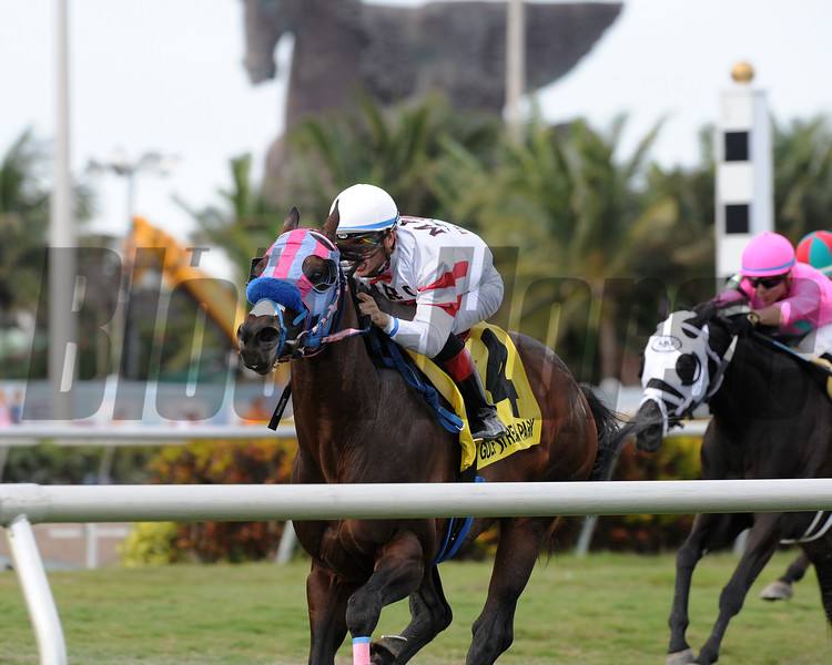 Successful Native wins the 2018 Janus Stakes<br /> Coglianese Photos/Kenny Martin