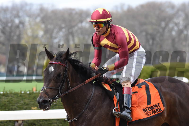 Lady Alexandra wins the 2018 License Fee<br /> Coglianese Photos/Chelsea Durand