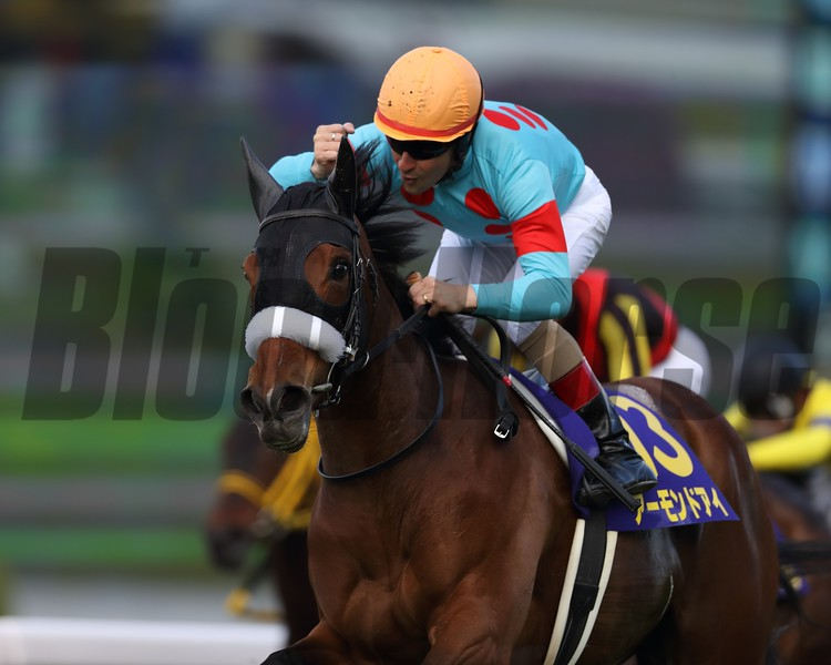 Almond Eye with Christophe Lemaire wins the Oka-sho (G1) at Hanshin Racecourse on April 8, 2018