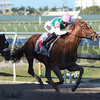 Hofburg - Maiden Win, Gulfstream Park, March 3, 2018<br /> Coglianese Photos