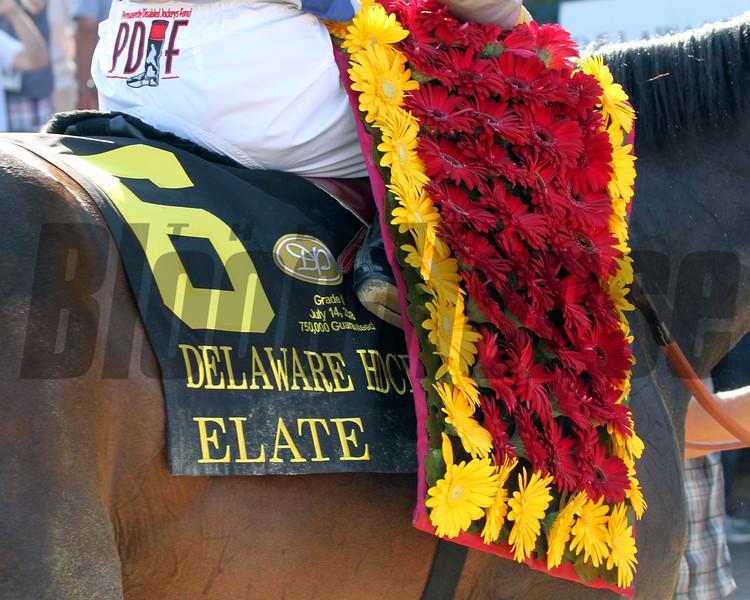 Elate Saddle Cloth Delaware Handicap Chad B. Harmon