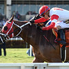 Oscar Nominated wins the W. L. McKnight Handicap<br /> Coglianese Photos/Lauren King