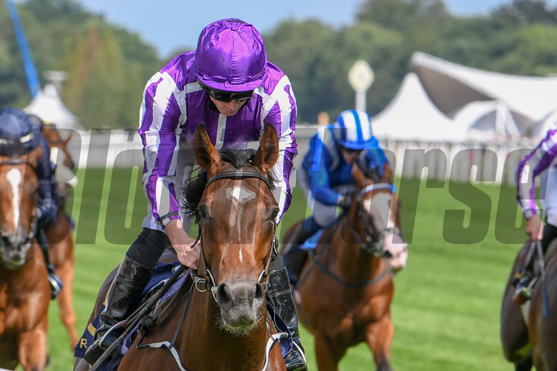 Kew Gardens, Ryan Moore, win thr G2 Queens Vase, Royal Ascot, Ascot Race Course, Ascot, UK, 6-20-18, Photo by Mathea Kelley