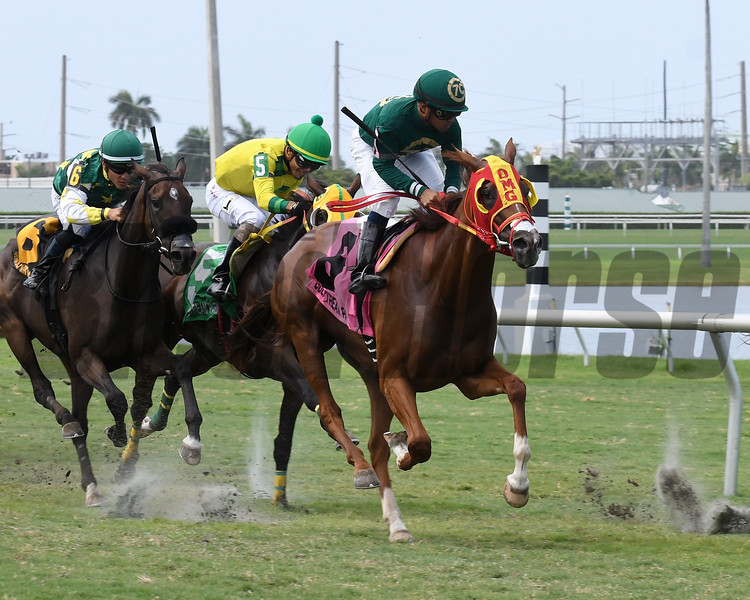 Camila Princess (#8) is placed first in the 2018 Martha Washington Stakes after the disqualification of Midnight Soiree.<br /> Coglianese Photos/Lauren King