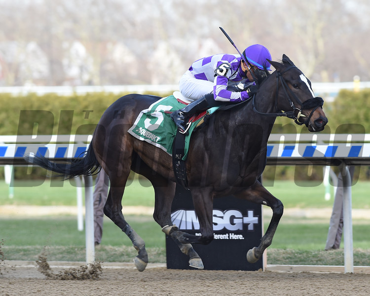 Baby Boss wins the 2018 New York Stallion Stakes<br /> Coglianese Photos/Chelsea Durand