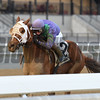 Quezon wins the 2018 La Verdad<br /> Coglianese Photos/Cheslea Durand