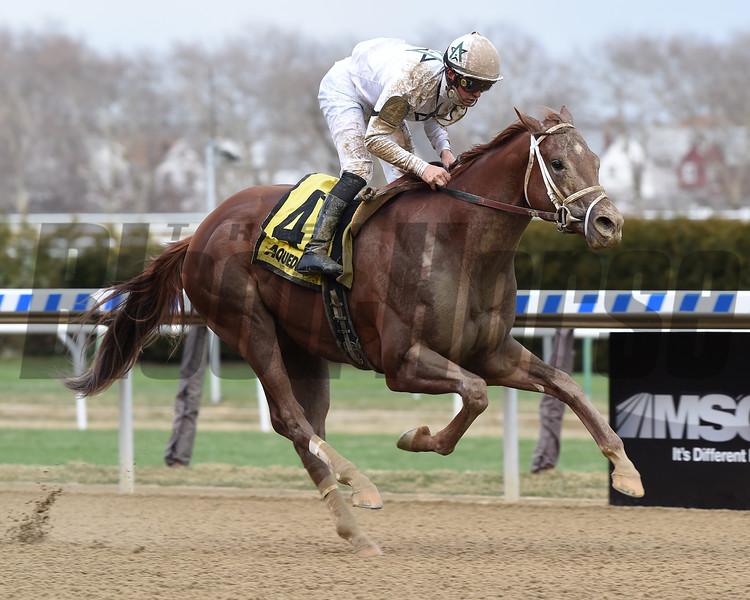National Flag wins the 2018 Bay Shore<br /> Coglianese Photos