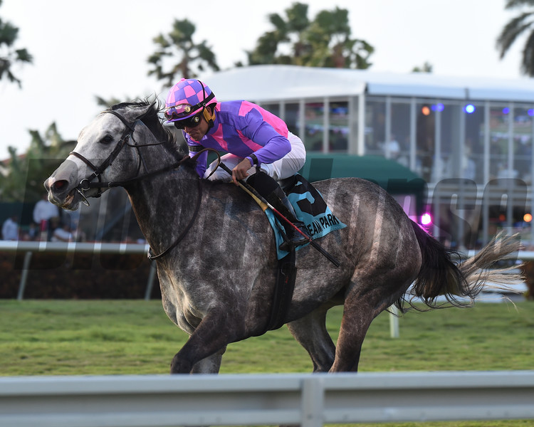 Stormy Victoria wins the 2018 South Beach Stakes<br /> Coglianese Photos