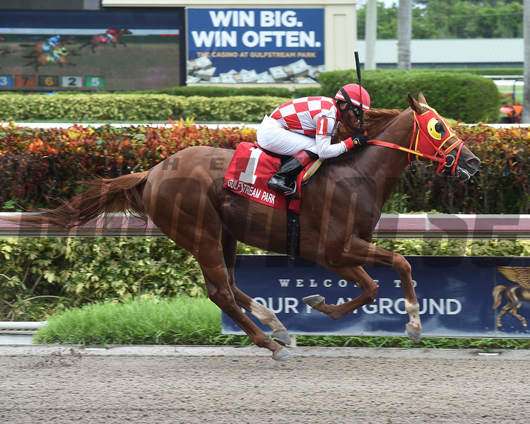 War Giant wins the 2018 Carry Back Stakes<br /> Coglianese Photos/Leslie Martin
