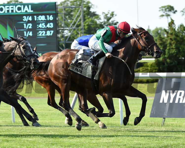 La Sardane wins the 2018 Intercontinental Stakes<br /> Coglianese Photos/Susie Raisher